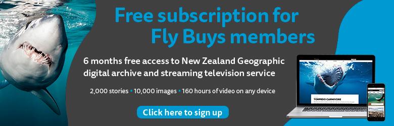 NZ_Geo